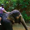 I Was A Bumbling Englishman In A Sri Lankan Disguise